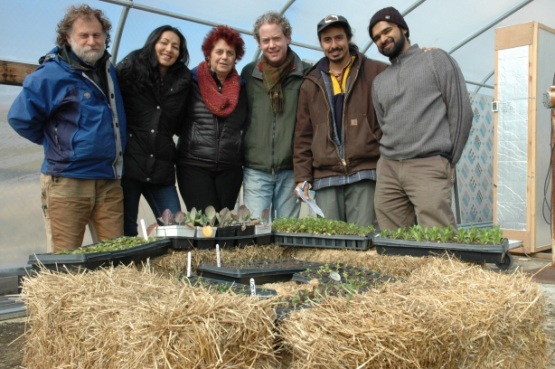 "Staffers at ECO City Farms in Edmonston stand in front of a straw and compost ""incubator"" that nurtures seedlings in the plant nursery. From left to right, Benny Erez, Viviana Lindo, Margaret Morgan-Hubbard, Matthew Carucci, Christian Melendez and John Costa."