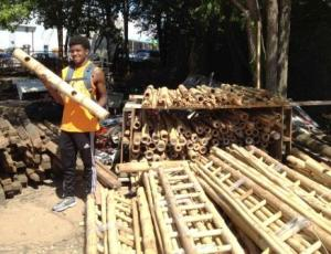 Howard, our Summer Sustainable Business Apprentice, shows off the bamboo